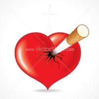 spam gyanus, Q10 szívvitamin, gingko biloba agyra szívre, szója lecitin szívre, galagonya szívre,