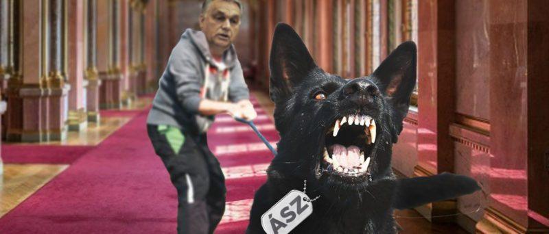 ASZ Orbán kutyája a DK-t támadja politikai boszorkányüldözés