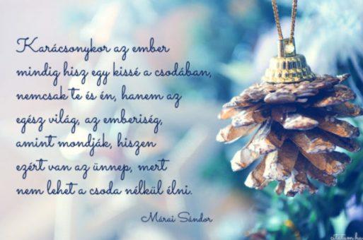 Boldog BÉKÉS karácsonyi Ünnepeket