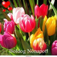 Nőnap, Nőnap virágok, nőnap versek, nőnap mikor van, nőnap eredete, Nemzetközi nőnap, története.