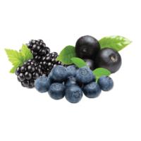 Acai berry gyógyhatású növény, szív érrendszer gyógyhatású, Acai berry antioxidáns hatású,