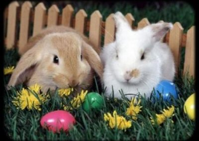 húsvét ünnepe, húsvétnapja, húsvéti locsoló versek, húsvét Jézus ünnepe